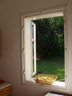 FOTKA - okno do lesa