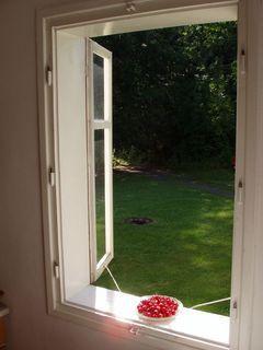 FOTKA - zátiší - okno s třešněmi
