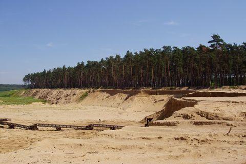 FOTKA - Váté písky, Hodonínsko - 1.