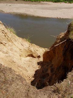 FOTKA - písek kolem  řeky Moravy nedaleko Hodonína