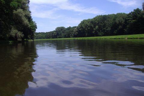 FOTKA - řeka Morava z lodi