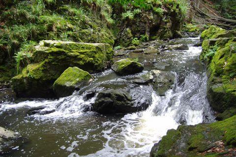 FOTKA - řeka Doubrava (2)