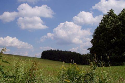 FOTKA - krajina bez lidí - na žďársku (aneb nažďár!!!)
