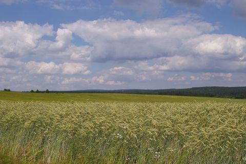 FOTKA - Krajina na Žďársku