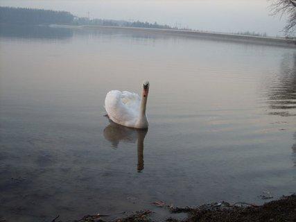 FOTKA - příroda sama12