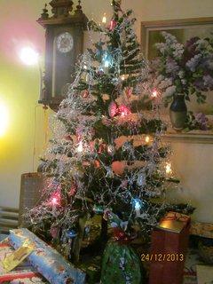 FOTKA - Vánoce 2013..