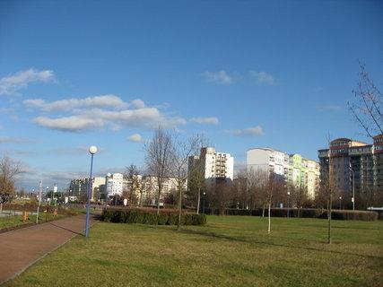 FOTKA - Prosinec, slunečno 25