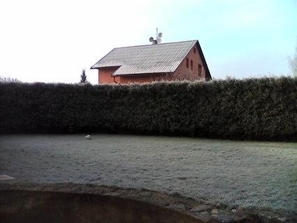 FOTKA - vsude mraz