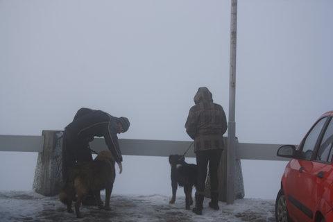 FOTKA - brrr-zima