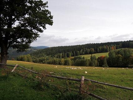 FOTKA - Šumavské pastviny nedaleko Srní