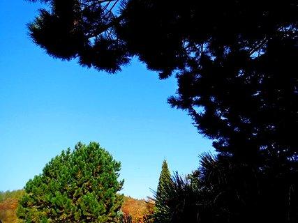 FOTKA - podzim-A401