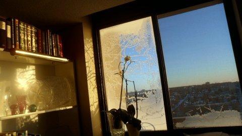 FOTKA - Mráz kreslí na okna.