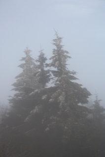 FOTKA - počasí se mění podle svět stran..++