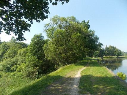 FOTKA - Z břehu rybníka+...