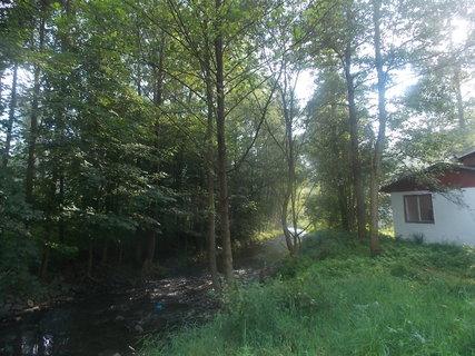 FOTKA - Protékající potok lesem--