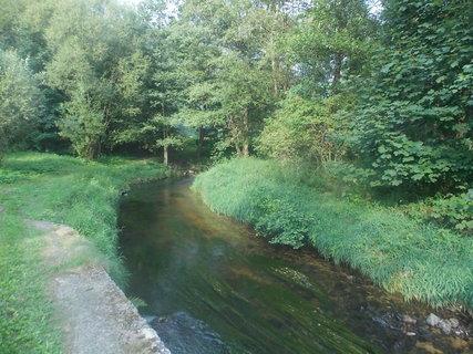 FOTKA - Protékající potok lesem---