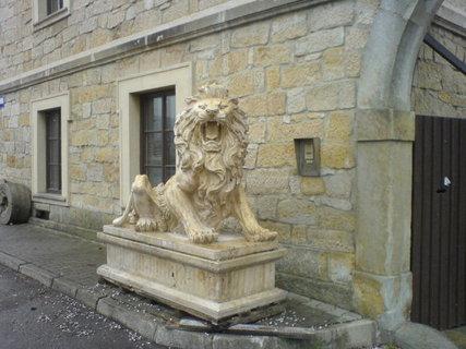 FOTKA - socha lva