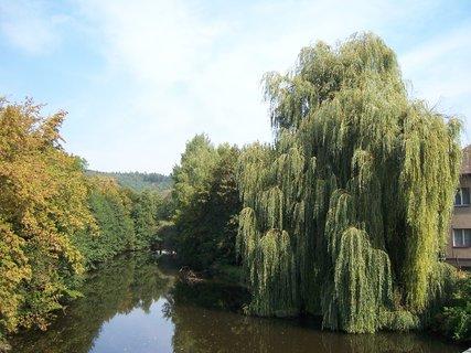 FOTKA - přírodní scenérie z České Skalice