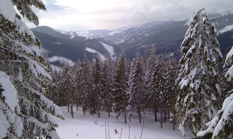 FOTKA - horská zima