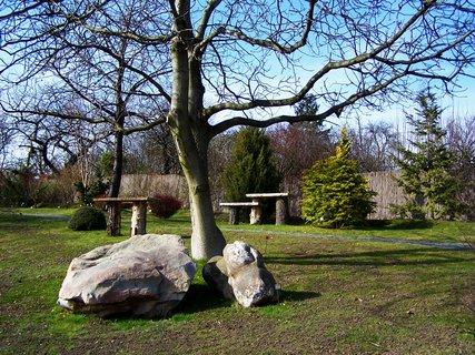 FOTKA - Botanická - Kameny v japonská zahradě