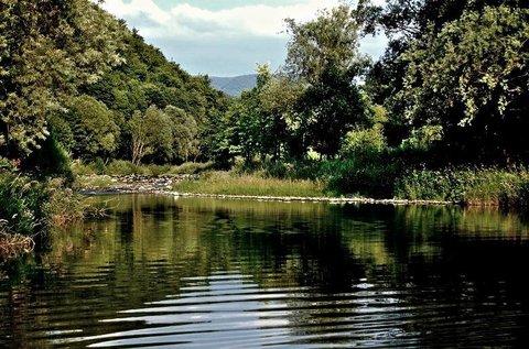 FOTKA - v přírodě u řeky