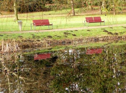FOTKA - Zrcadlení v parku