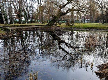 FOTKA - Lednové zrcadlení v parku