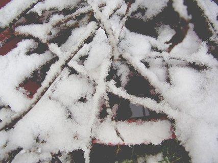 FOTKA - konečně máme letos sníh