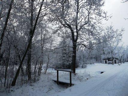 FOTKA - sníh tu je