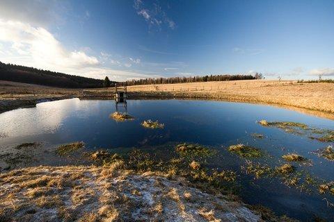 FOTKA - Horský rybníček...
