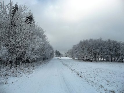 FOTKA - Jesen�ky - Ramzov�, cesta sm�rem k V�trolamu