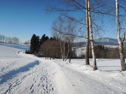 FOTKA - zimní cesta z kopce