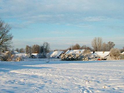 FOTKA - Pod sněhovou peřinkou