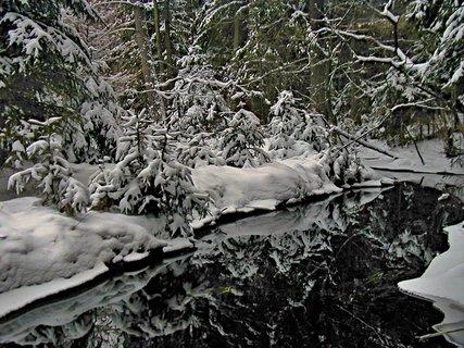 FOTKA - Vodní zrcadlo
