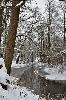 FOTKA - Zimní řeka