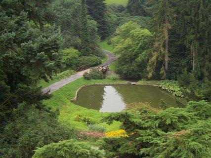 FOTKA - Jezírko v Průhonickém parku