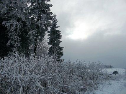 FOTKA - Jeseníky - Ramzová, cestou  směrem k Větrolamu.