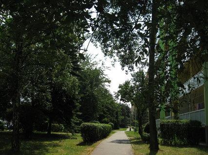 FOTKA - Rok v  Letňanech - Červenec