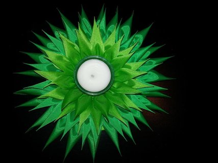 FOTKA - zelený lotos