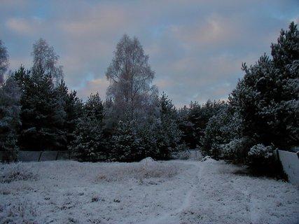 FOTKA - Jedno zimní ráno...