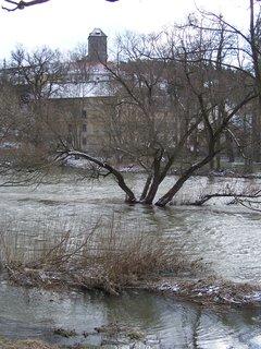 FOTKA - Sázava 8. 2. 2013