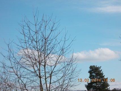 FOTKA - jako jarní nebe - 2