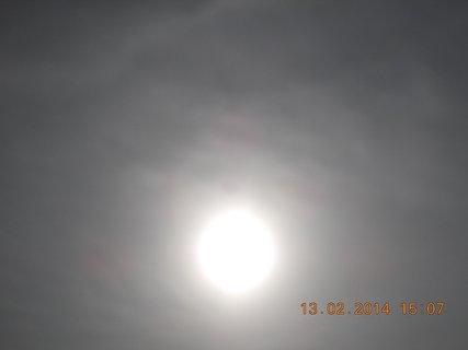 FOTKA - kuk do sluníčka