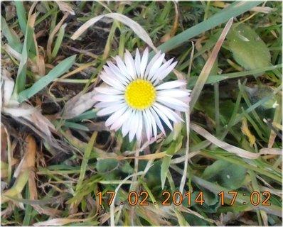 FOTKA - jako když už je jaro, včera bylo úžasně krásně