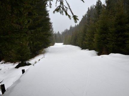 FOTKA - A prý že není nikde sníh zapadali jsme místy po kolena