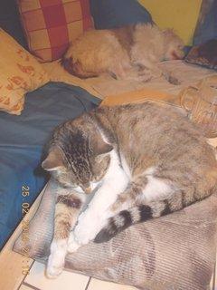FOTKA - spíme tvrdě obě