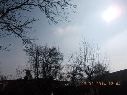 FOTKA - nebe a pohled do sluníčka