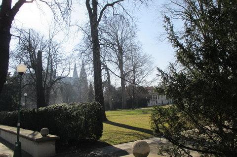 FOTKA - Přes plot pohled do Královské zahrady