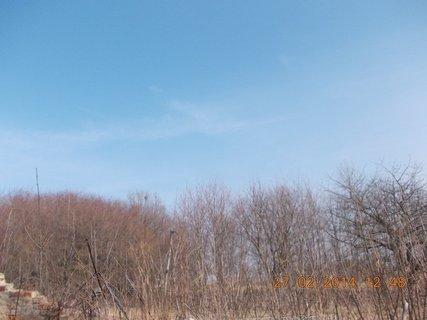 FOTKA - únorové nebe