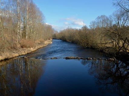 FOTKA - Únorová šumava